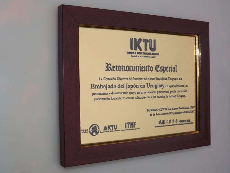 Premiaciones Medallas Foto 2 1, San Miguel Artículos Publicitarios